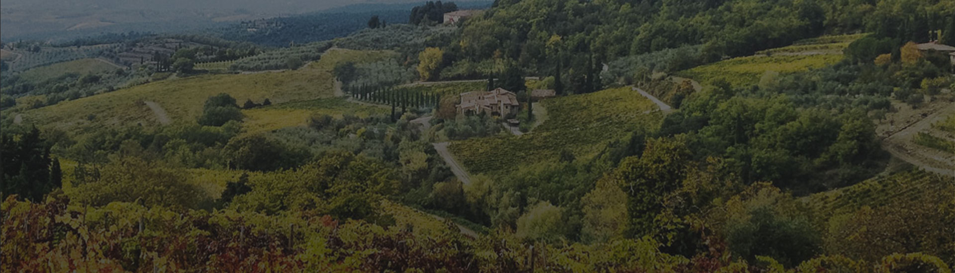CASTELLARE DI CASTELLINAIN THE HEART OF CHIANTI CLASSICO