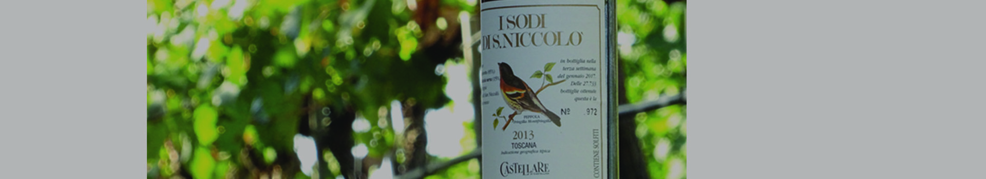 TOP RATINGS FOR I SODI DI SAN NICCOLO' 2013